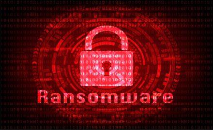 Ransomeware : en hausse sur les 12 derniers mois